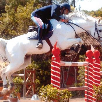 Equitation Roma ASD