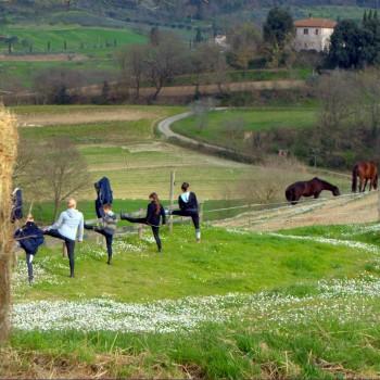 Associazione Equestre Tre Laghi