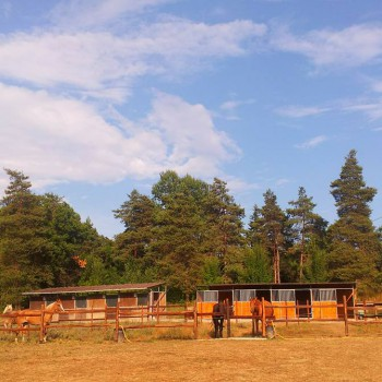 Rio Selvatico Ranch asd