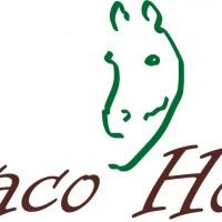 Benaco Horses asd equestre