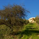 Borgo Santa Rosa