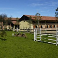 QUEEN ISABEL HORSE & PONY CLUB