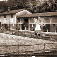 Azienda Agraria MonteMalbe