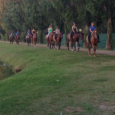 HORSE RIDING CENTER A.S.D.