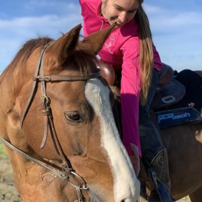 ASD MF Quarter Horse
